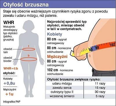 Otylosc brzuszna: czynniki ryzyka zgonu z powodu udaru mozgu, zawalu serca, cukrzycy typu II, wczesnej smierci